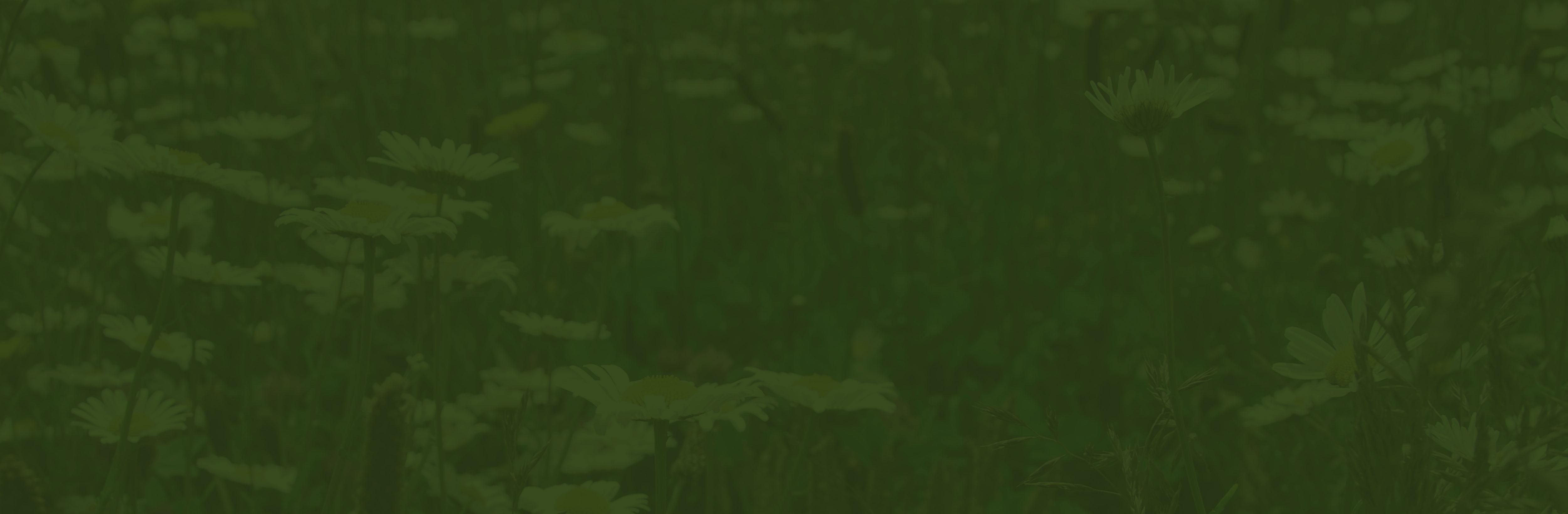 Vegetationsmatten